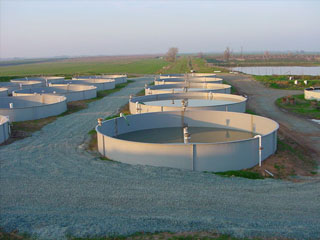 Aquaculture Tanks For Fish Filters Lids Pipes Floors